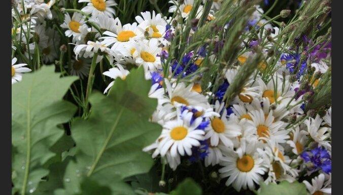 Рижский замок втрое сократил расходы на цветы