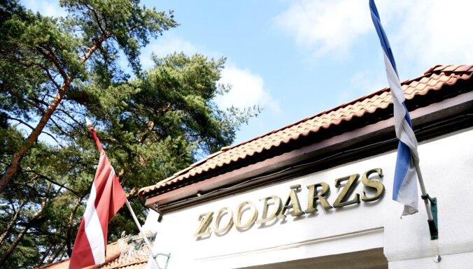 """На этих выходных обладатели """"звериных"""" имен и фамилий могут посетить зоопарк бесплатно"""