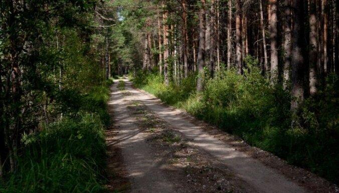 Nezināmos apstākļos Daugavpils novadā gājis bojā autovadītājs