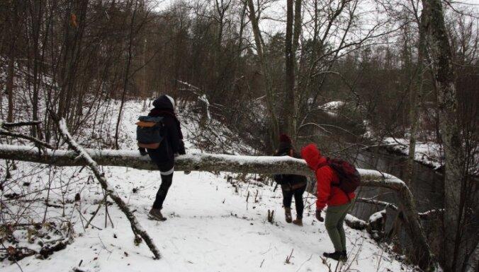Ziemas pārgājiens: Pa bebru nedarbiem gar Abula un Gaujas krastiem