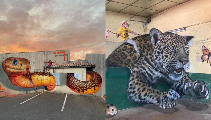 ФОТО: Как настоящие! Французский художник преображает пространство гигантскими животными