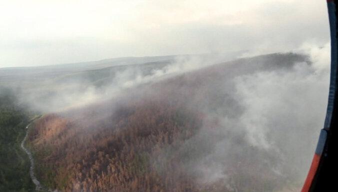 МЧС назвало причину распространения пожаров в Сибири