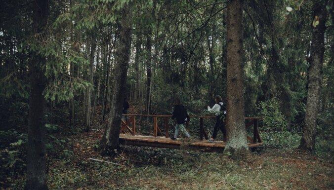 Tematiskās 'Meža dienas' – kur piedalīties un ko apskatīt Ludzas pusē