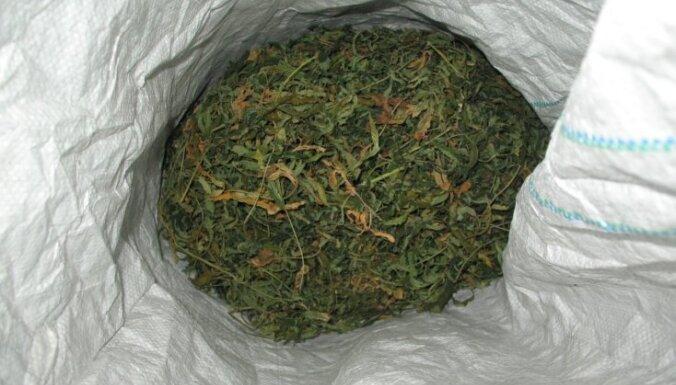 """В Риге у наркоторговки изъяли 74 грамма """"травки"""""""