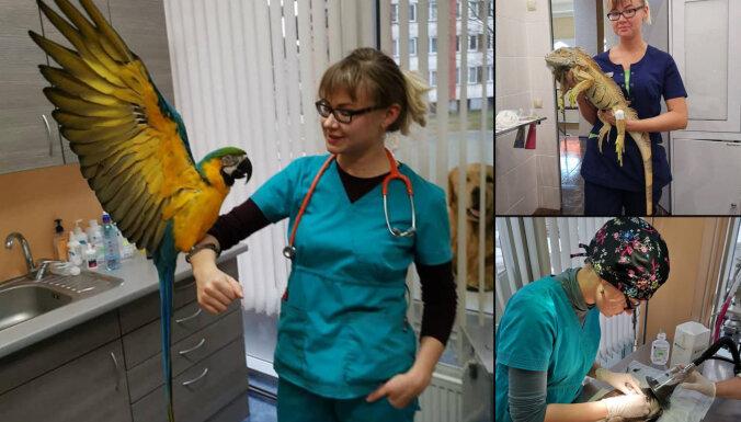 """Ветеринар Екатерина Дубинская: """"Некоторым владельцам животных хочется посоветовать купить плюшевую игрушку"""""""
