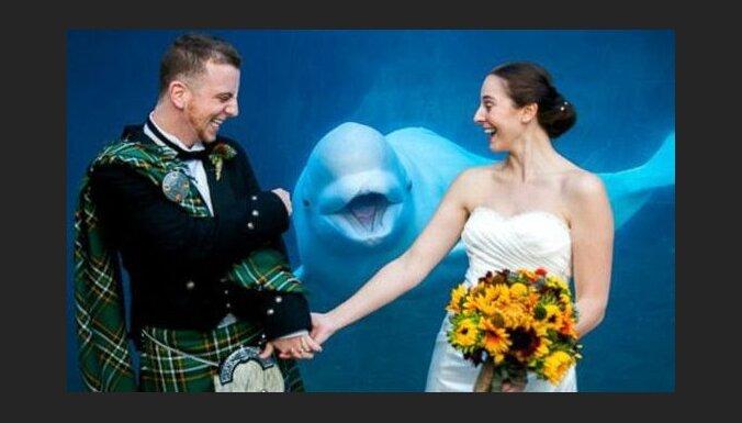 Foto: Jaunajam pārim pa vidu parādās smaidīgs valis