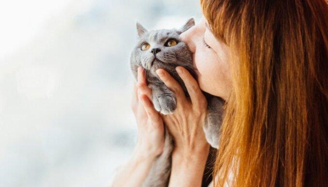Животные-веганы. Почему все больше собак и кошек перестают есть мясо