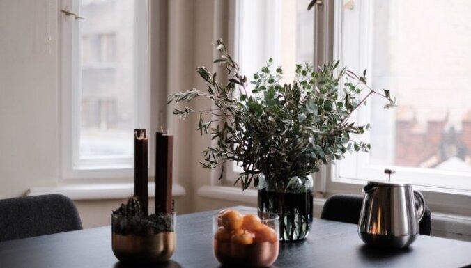 Рынок серийного жилья в окрестностях Риги демонстрирует стабильность