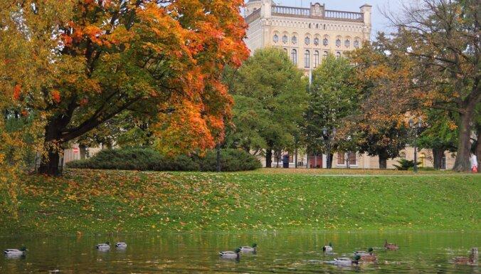Синоптики: в конце октября сохранится теплая погода