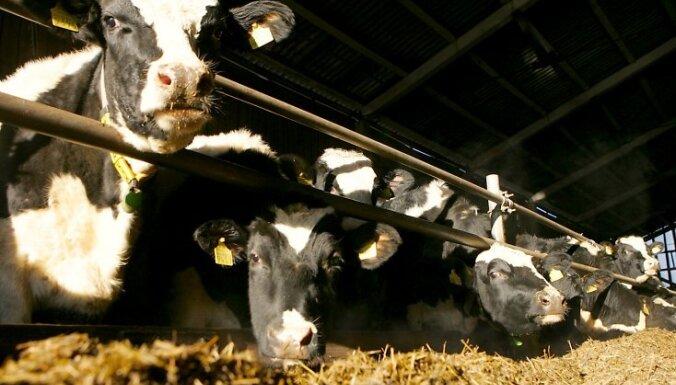 Agrofirmas 'Turība' apgrozījums pērn sasniedzis teju 3,5 miljonus eiro
