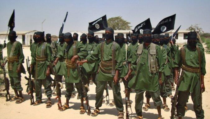 Евросоюз одобрил военные операции на суше Сомали