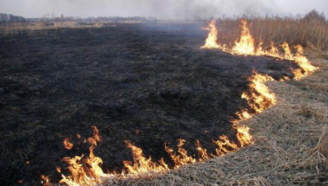 Otrdien dzēsti divi paaugstinātas bīstamības kūlas ugunsgrēki