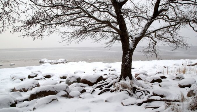 Kolkā sniega segas biezums jau 13 centimetru