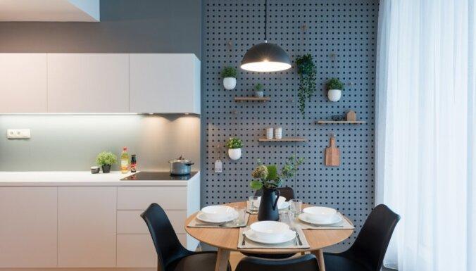 No rozetēm līdz mēbelēm: kā radīt harmonisku virtuves iekārtojumu