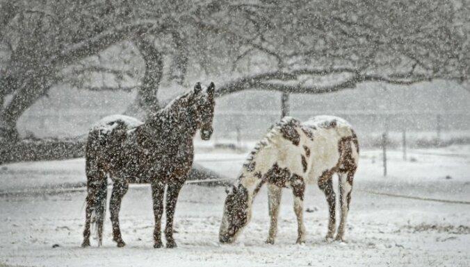 Brīdina par stipru snigšanu piektdienas pēcpusdienā Latvijas vidienē