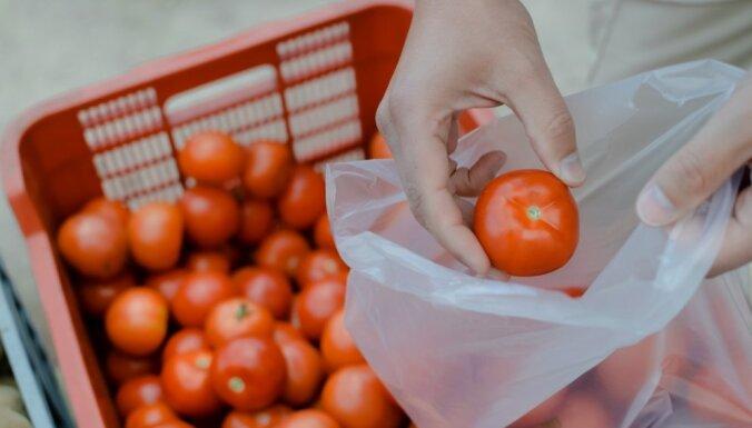 Bažas par inficētajiem tomātiem: tirgotāji argumentē ar stingrām kvalitātes kontrolēm