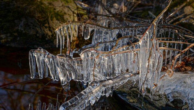 ФОТО. Ледяное кружево на озере Аугстрозес-Лиелэзерс