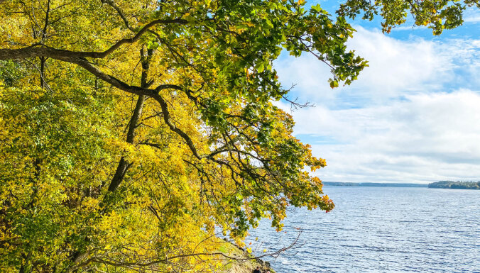 Прогулки по центру города: четыре ухоженных парка для неспешного отдыха
