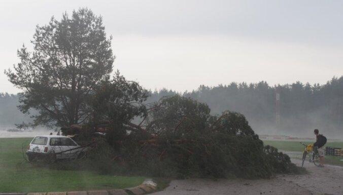 Sestdien palīdzība sniegta desmit karstuma upuriem; vētrā sieviete gūst traumas Biķernieku mežā