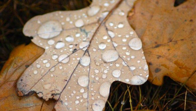 Naktī daudzviet līs, svētdien gaidāmi īslaicīgi nokrišņi