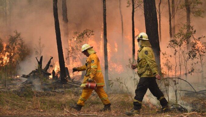 Огонь от молний и молнии от огня. Пожары в Австралии замкнулись в порочный круг
