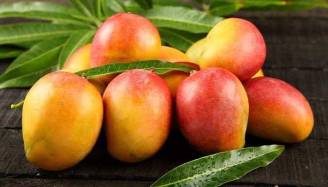 Через российско-латвийскую границу не пропустили более 4 тонн манго и авокадо