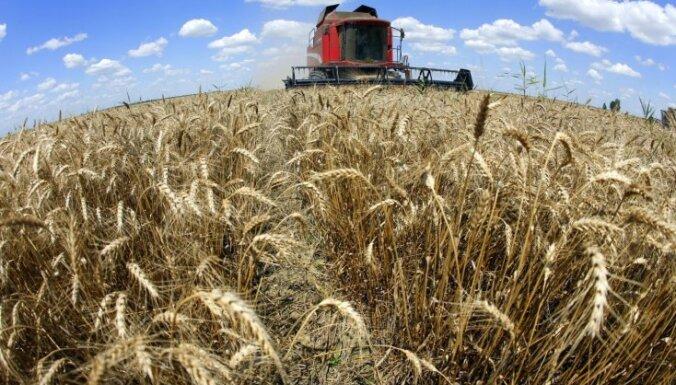 Bloomberg: доход России от сельского хозяйства превысил выручку от нефти и оружия