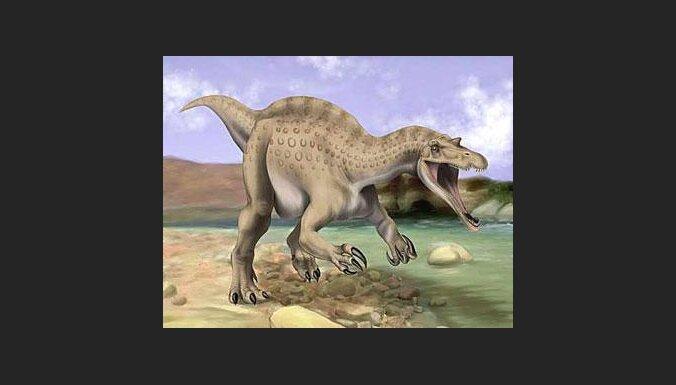 Iespējams, Čiksulubas meteorīts nenogalināja dinozaurus
