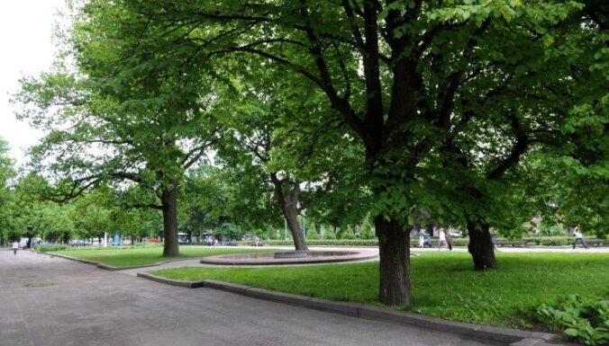 Tuvāko mēnešu laikā Rīgā plānots veikt visu pilsētas parku inventarizāciju