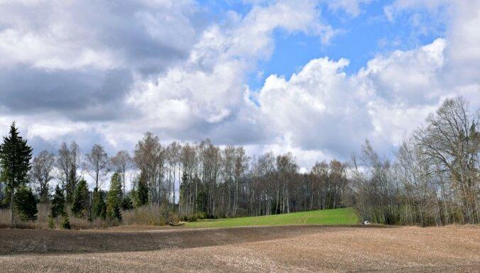 Latvijā šogad varētu būt izsaluši līdz 5 % ziemāju platības, lēš 'Zemnieku saeima'