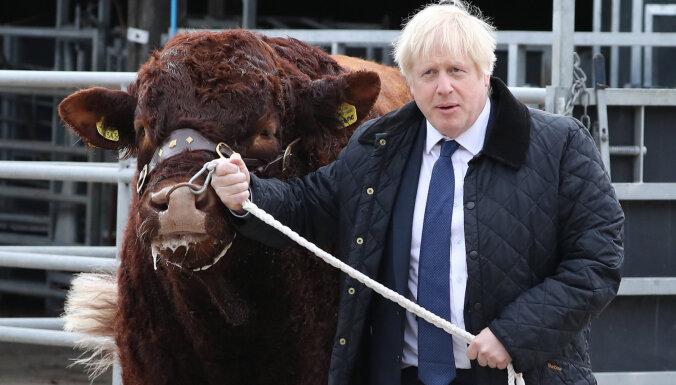 """Британия вряд ли выйдет из ЕС 31 октября: лорды приняли закон об отсрочке """"брекзита"""""""