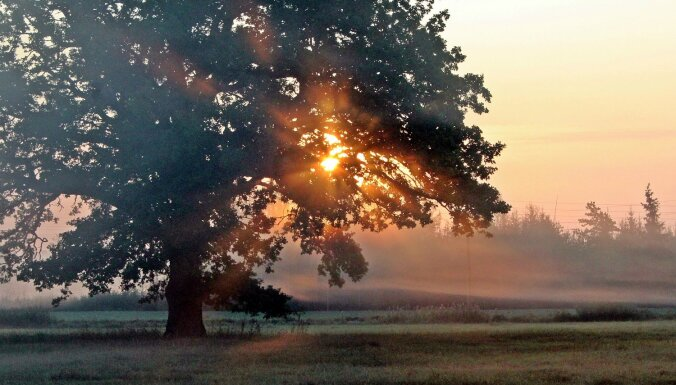 Foto: Septembra valdzinājums – rīta migla un saullēkts