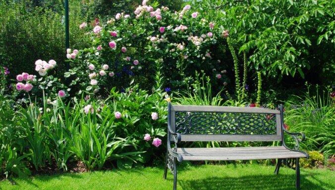 Kā izvēlēties, iespējams, svarīgāko dārza elementu - atpūtas soliņu
