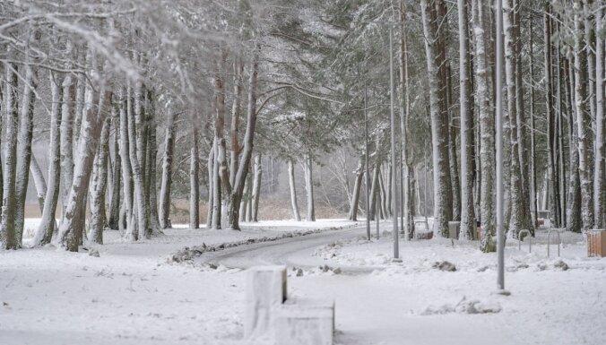 Снежные выходные в Даугавпилсе: где покататься на лыжах, коньках и санках?