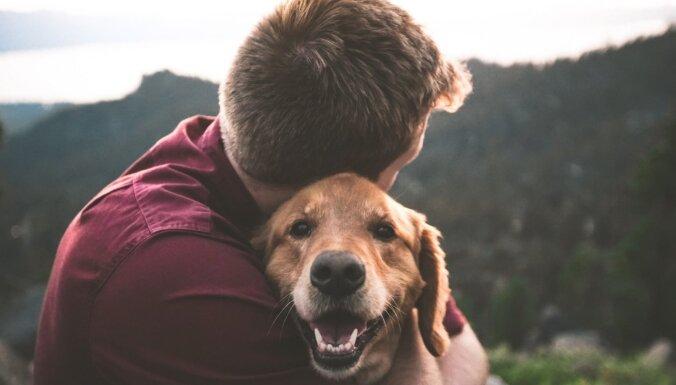 26. augusts – Starptautiskā suņu diena. Vai ķepaiņi padara mūs laimīgākus?
