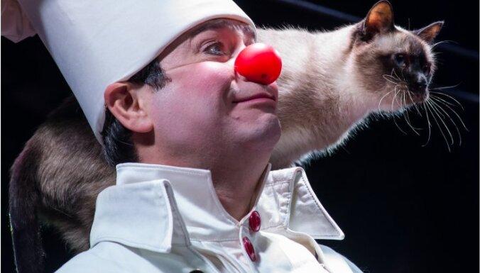 Нужен ли билет детям в театр куклачева билета на концерт элтона джона