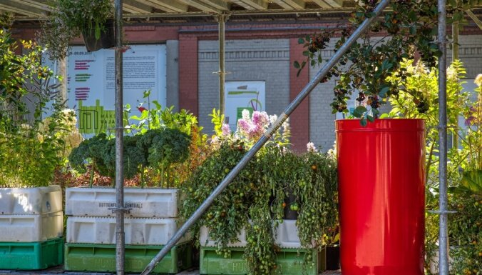 Foto: Kalnciema kvartālā tapis septiņus metrus augsts urbānais dārzs