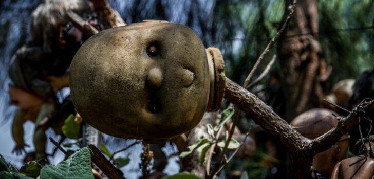Недетские забавы: остров кукол (ФОТО)