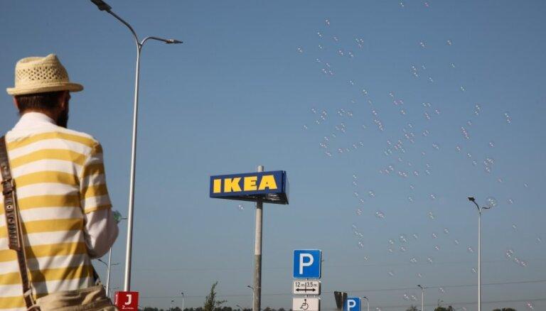 IKEA активно скупает леса в Балтии, становясь одним из крупнейших лесовладельцев