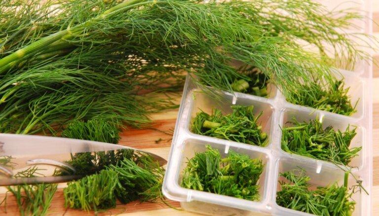 Garšaugu mūža paildzināšana: kā zaļumus sasaldēt eļļā