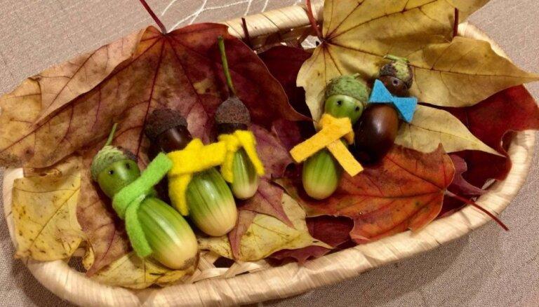 Miķeļdiena – kašķēšanās iemesls sociālajos tīklos par dārzeņu izmantošanas lietderīgumu un vecāku pūlēm