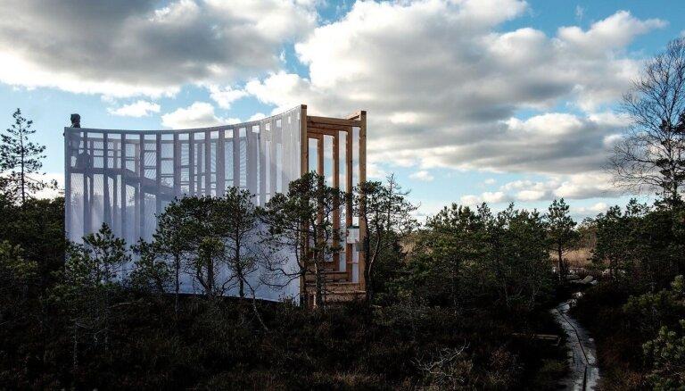 Piecas dabas takas Igaunijā, ko vērts izstaigāt