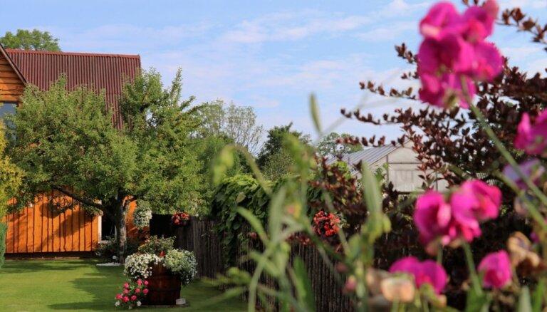 ФОТО: Самые яркие, ухоженные и красивые дома (и квартиры!) в Тукумсе