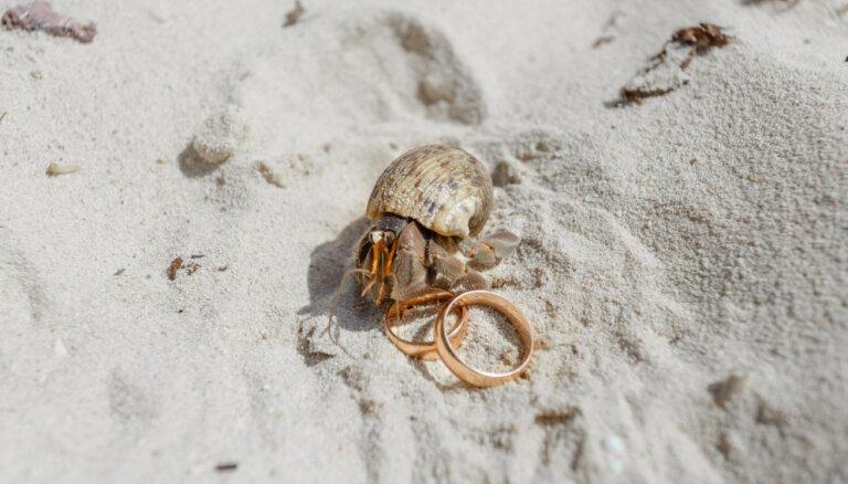 Vai ir iespējams noslēgt līgumu, kas neļautu šķirt laulību