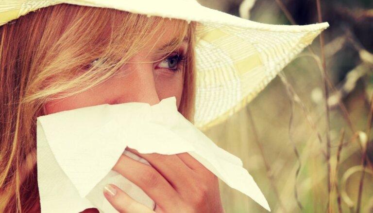Kāpēc vasarā parādās iesnas un kā ar tām cīnīties