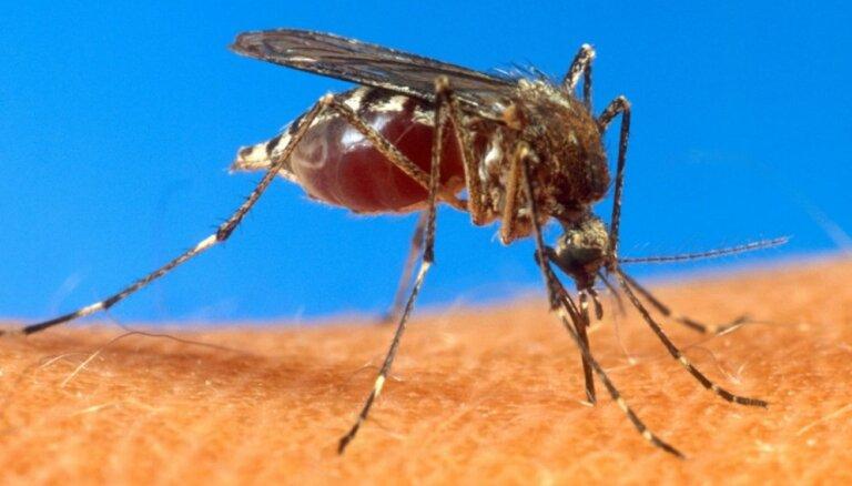 Organisma reakcijas uz odu kodumiem. Ko tās vēsta par tavu imunitāti?