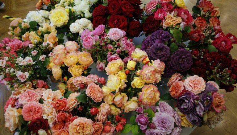 Через границу не пропустили более 113 000 срезанных цветов