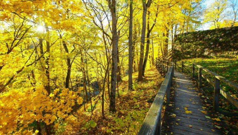 """Не только """"золотая осень"""". Чем еще заняться в Сигулде в это время года"""