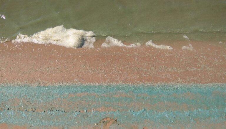 Arvien vairākās peldvietās zilaļģu dēļ noteikti peldēšanās ierobežojumi
