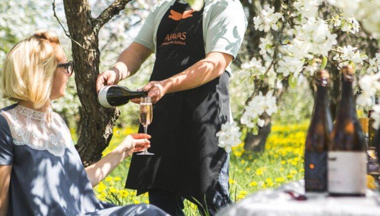 Lieldienu atrakcijas Abavas vīndarītavā 21. Un 22. aprīlī, mīļi gaidītas būs arī ģimenes ar bērniem